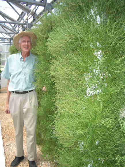 Dr. Resh with thyme plant towers
